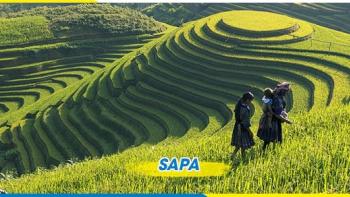 TOUR DU LỊCH SAPA - CÁP TREO FANSIPAN - KDL HÀM RỒNG 2N1D